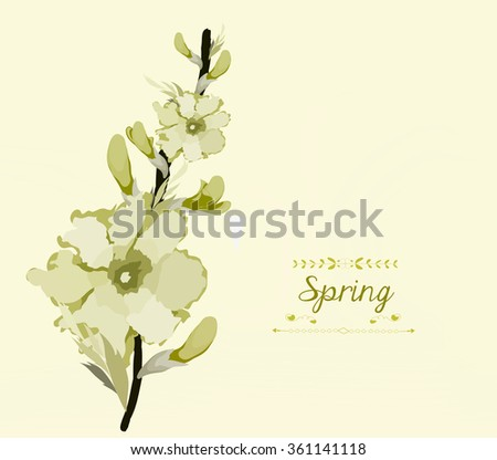 Floral background, spring theme, greeting card - stock photo