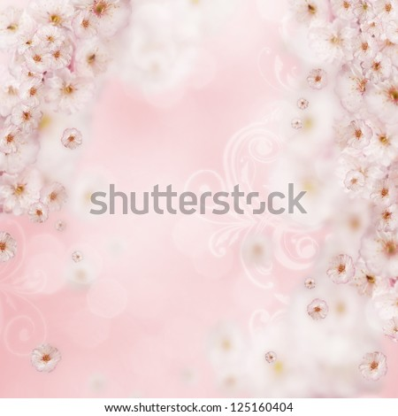 Floral Background with Cherry Blossom - stock photo