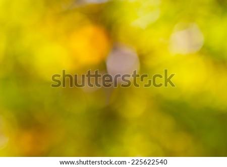 floral bokeh yellow-green - stock photo
