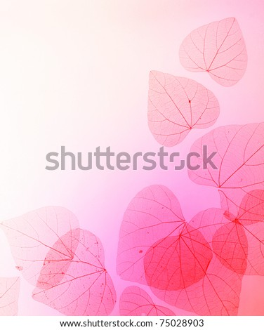Floral Border of Misty Red Leaves over Soft Purple