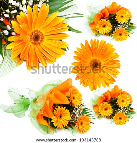 Floral bouquet. Photo gerbera isolated on white background - stock photo