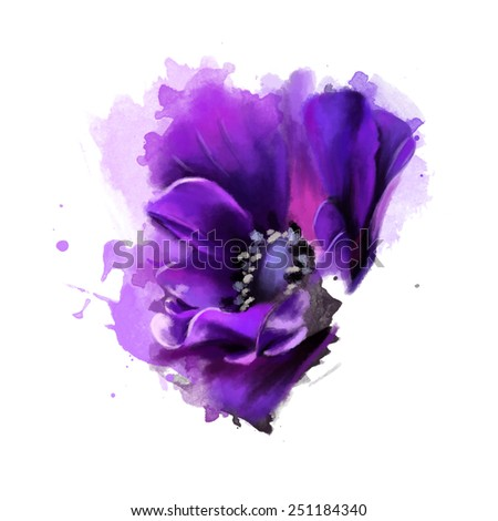 Floral collection is Painted pink anemone. Watercolor, painting - stock photo