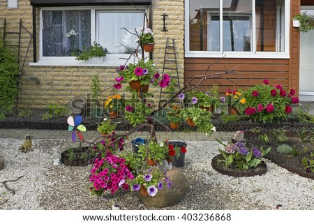 Floral compositions  near the summer rural village  mass production home.  - stock photo