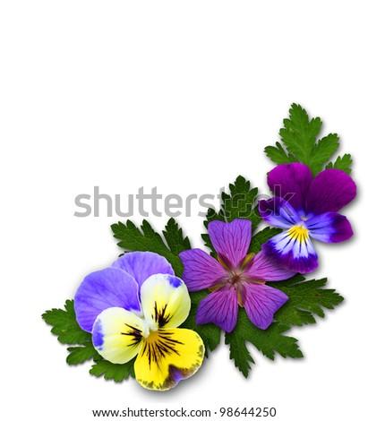 floral decor - stock photo