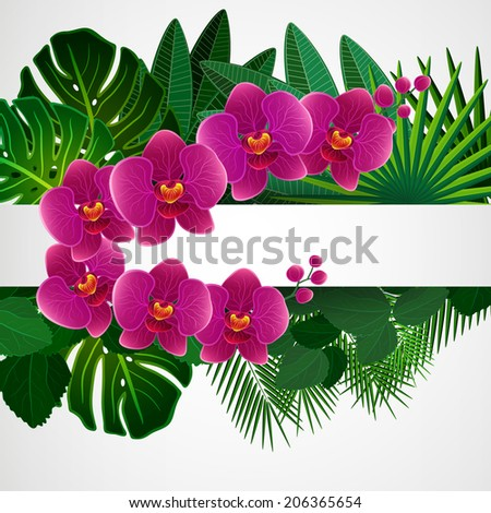 Floral design background. Orchid flowers. - stock photo