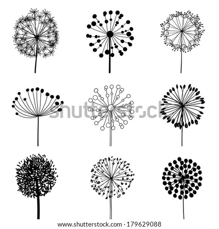 Floral Elements for design, dandelions - stock photo
