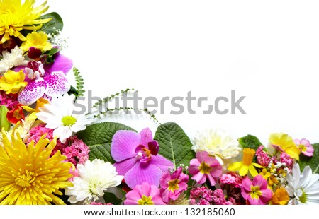 Floral greeting card with beautiful flowers. Isolated on white background. - stock photo