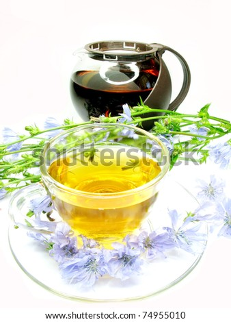 floral herbal tea with chicory extract and flowers