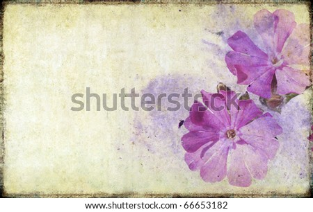 floral illustration and background - stock photo