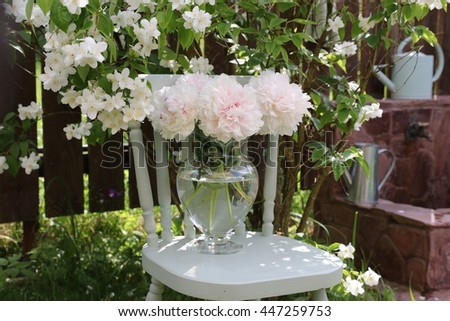 Floral scene in the garden.Beauty bouquet of tender pink peonies in big glass vase on the wooden mint chair on the background of flowers of jasmine, fancy, watering can. Real light and shadows.