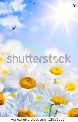 floral spring and summer background - stock photo