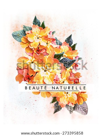 Floral t-shirt graphic with french slogan ''Natural Beauty'' , for fashion and other uses.  - stock photo