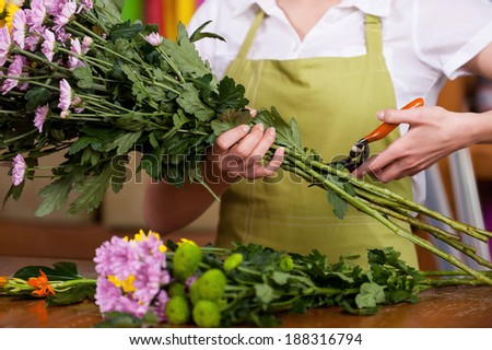 Florist at work. Cropped image of female florist in apron cutting flowers - stock photo