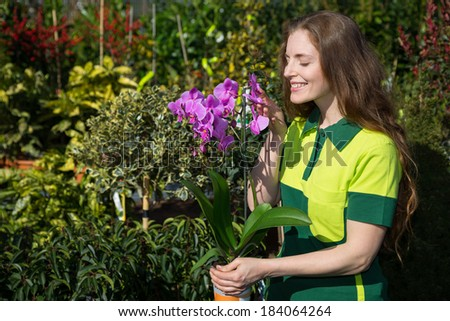 Florist or gardener smelling at orchid - stock photo