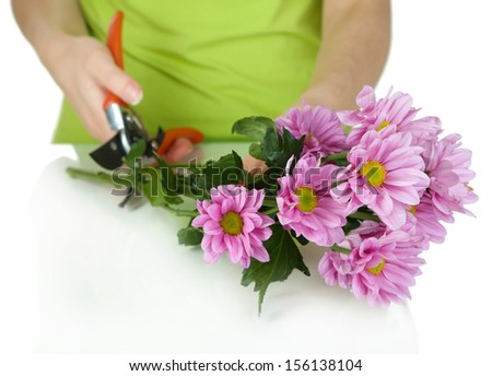 Florist shears cuts flowers isolated on white - stock photo