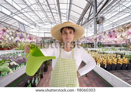 florist with hat in greenhouse watering the  flowers