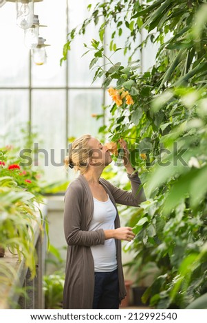 Florists woman smelling flowers in a greenhouse.  - stock photo