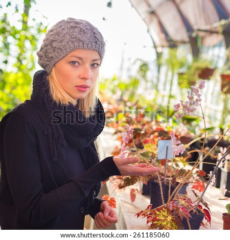 Florists woman working with flowers in a greenhouse.  - stock photo