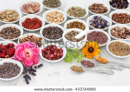 Flower and herb medicine selection used in alternative healing treatments in porcelain bowls with mortar and pestle and old silver spoons over distressed wooden background. - stock photo