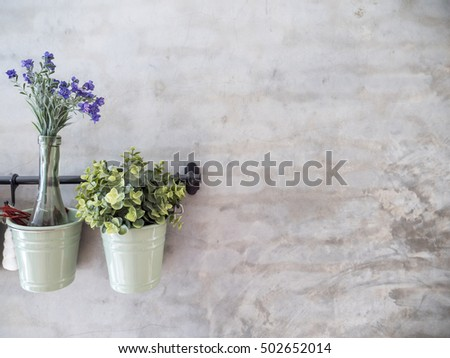 Flower and plant in pots hang on concrete wall