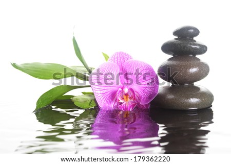 Flower and stones in rippling water - stock photo