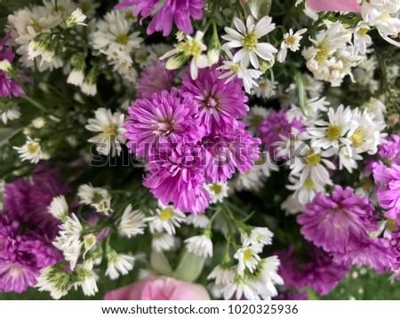 purple office decor. Flower Arrangement For Home And Office Decor, Purple Chrysanthemum Decoration Decor 2