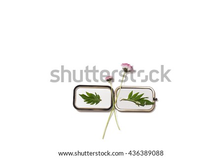 Flower arrangement is located on a mirror on an isolated background. Two field pink flower, two sheets. Space for text. Summer concept. - stock photo
