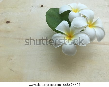 Flower arrangement, Plumeria flower, Frangipani flower in bowl on the wooden board.