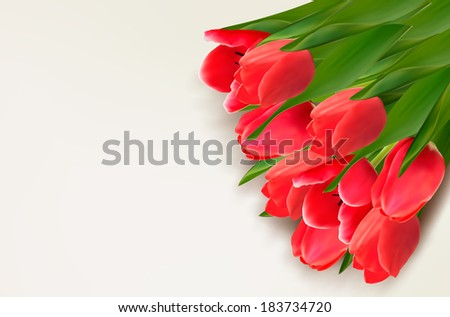 Flower background with red tulips and sample text. Raster version. - stock photo