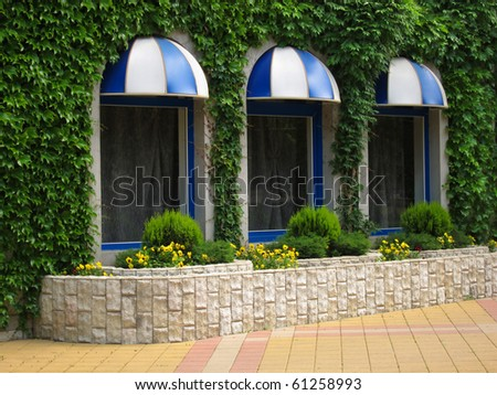 Flower bed with viol beside windows cafe - stock photo