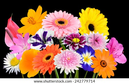 Flower Bouquet  Collection of Various Colorful Flowers and Wildflowers Isolated on Black Background. Vibrant Red, Blue, Pink, Purple, Yellow White, and Orange Colors. Bunch of wildflowers - stock photo