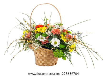 Flower bouquet from multi colored chrysanthemum and other flowers arrangement centerpiece in wicker basket isolated on white background. - stock photo