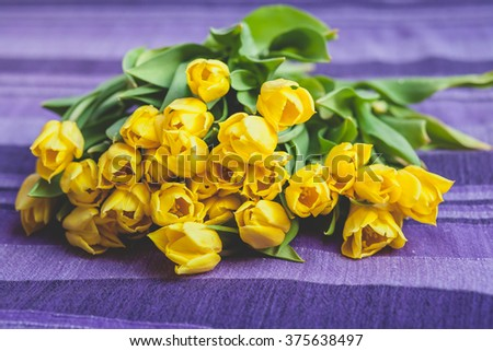 Flower bouquet of yellow tulips lying on purple background