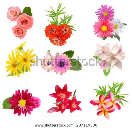 Flower bouquet: seasonal various Flowers isolated on White Background - stock photo