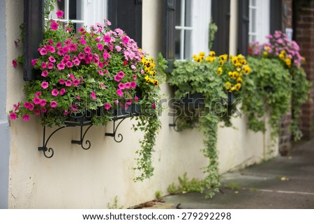 Flower boxes overflow with spring flowers on a historic home in Charleston, SC - stock photo