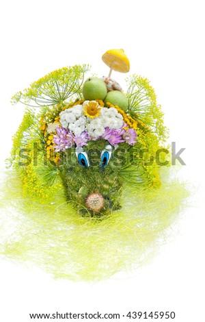 Flower composition handmade in shape of Hedgehog. - stock photo