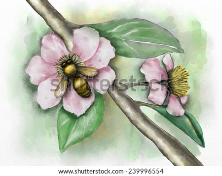 Flower composition with a bee. Original watercolor. - stock photo