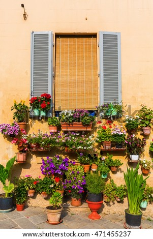 flower decoration at a house in Siena, Italy