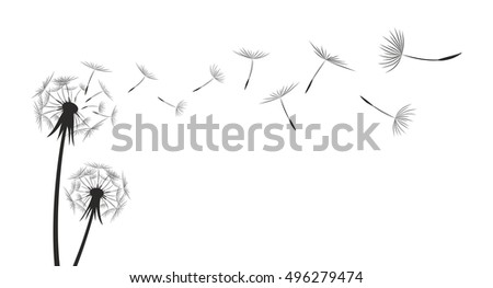 Flower field dandelion.