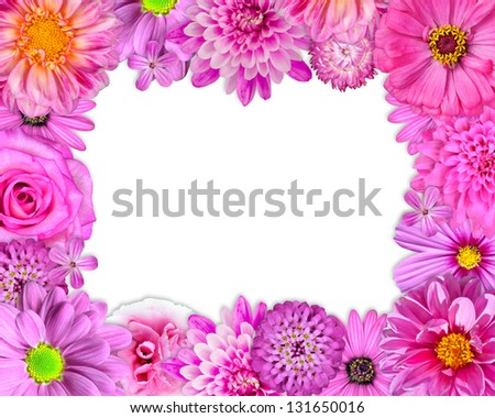 Flower Frame with Pink, Purple, Red Flowers Isolated on White Background. Selection of Nine Periwinkle, Rose, CornFlower, Lily, Daisy, Chrysanthemum, Dahlia, Carnation, Primrose Flowers