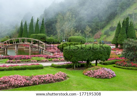 Flower garden and mist background - stock photo