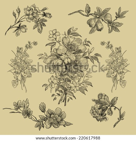 Flower illustration - stock photo