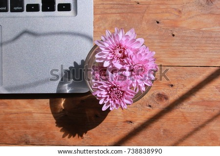 flower in a glass on the table