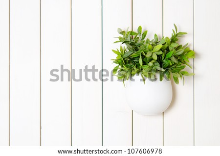 flower in a pot on a wooden wall - stock photo