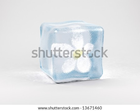 flower in ice cube - stock photo