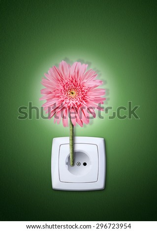 flower in making electricity - stock photo