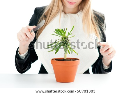 flower in pot: nice healthy business lunch for young business woman isolated on white with fork and knife in her hands (focus on flower)