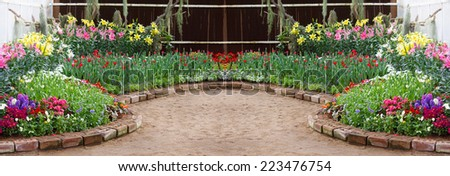 flower in the garden; panorama - stock photo