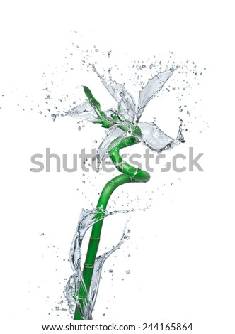 flower made of water - stock photo