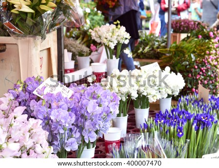 Flower market. Market stall with various fresh flowers and selective focus.  - stock photo